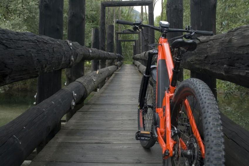 Cómo elegir la talla de una bici
