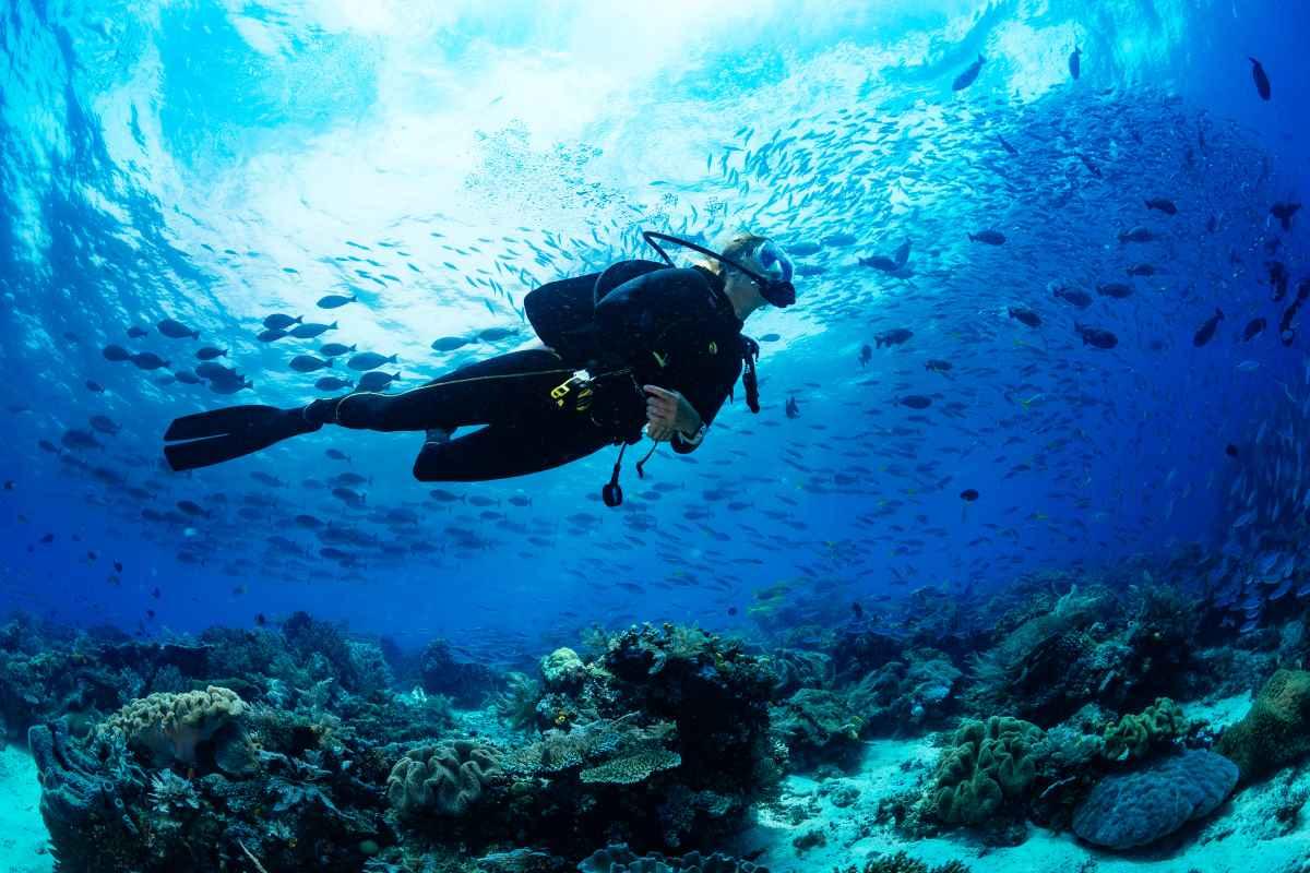 Bautismo de buceo: aprende a sumergirte en el mar